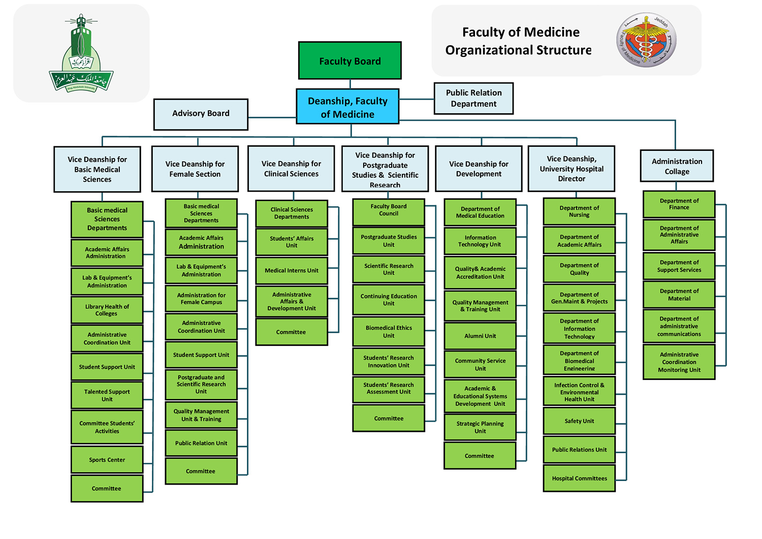 Faculty of Medicine - Organizational Structure